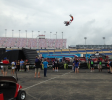 Stunt Shows